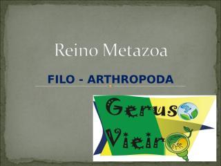 Reino Metazoa- Artropoda.ppt